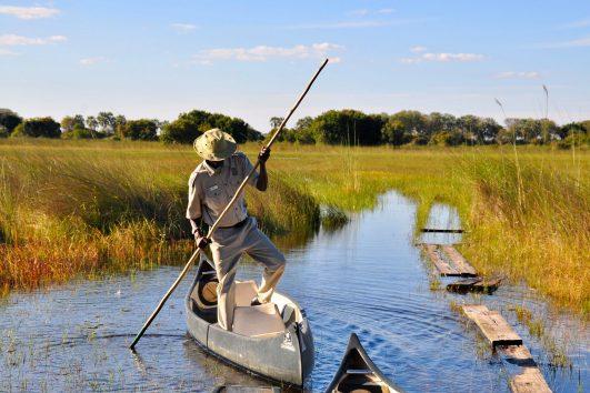botswana safari andtraveller