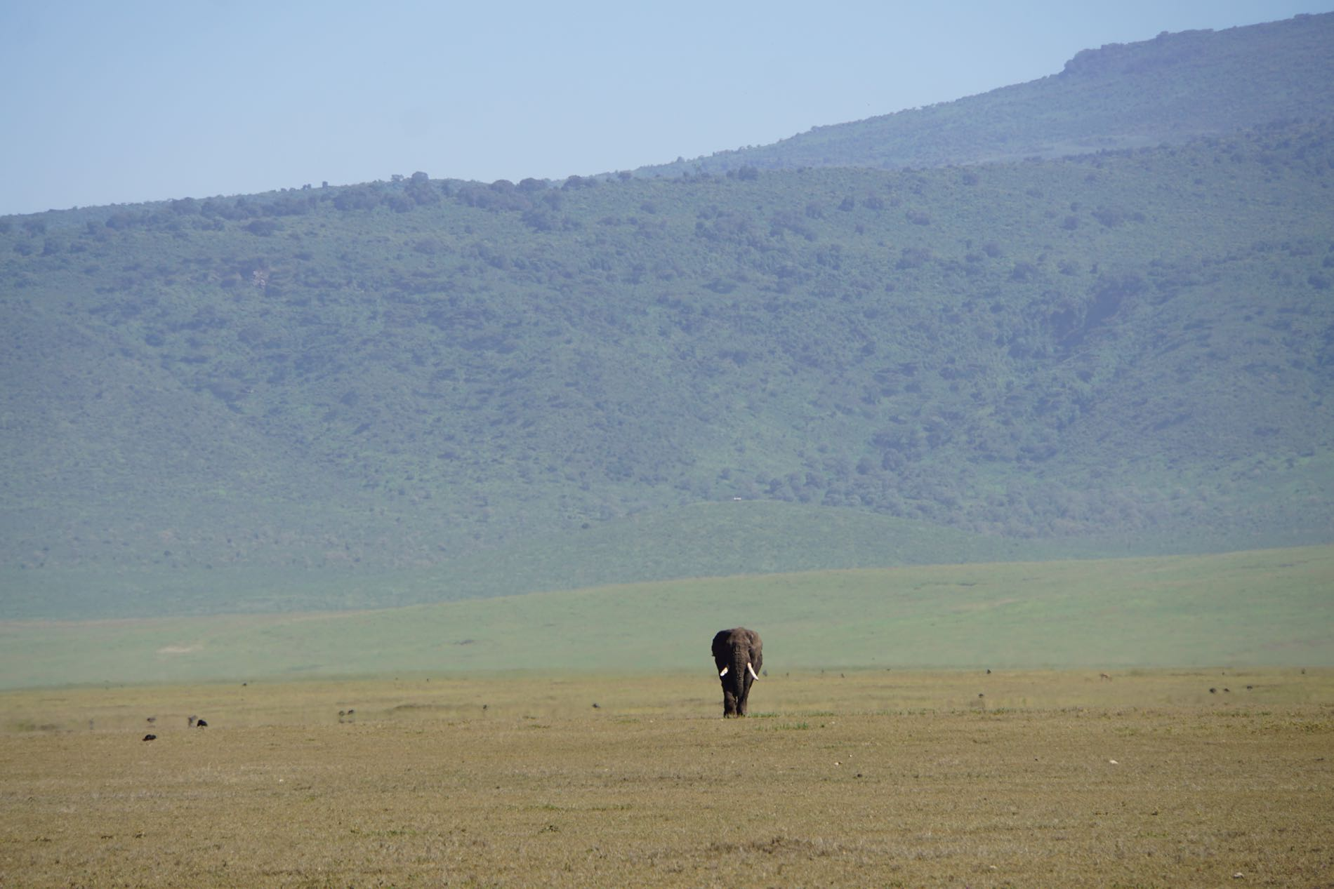 the ngorongoro crater  u2013 andtraveller