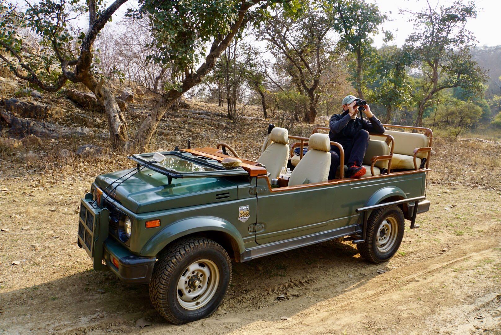 Safari de Tigres de Bengala
