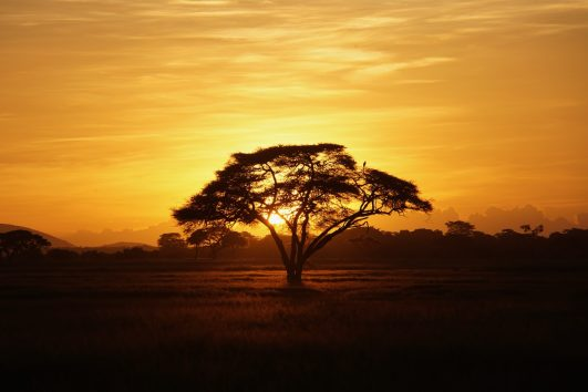new year eve sunset kenya andtraveller